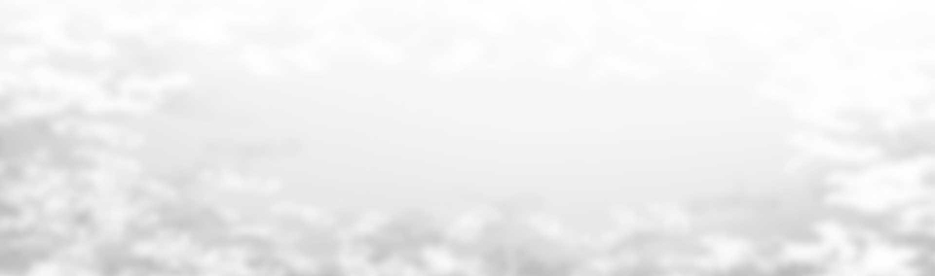 revslider_bg_summer_soft_grey2